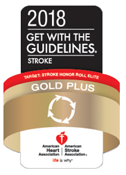 Desert Springs Stroke Gold Plus Target Stroke Honor Roll Elite 2018